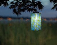 Soji LED Solar Lantern - Lime Leaf